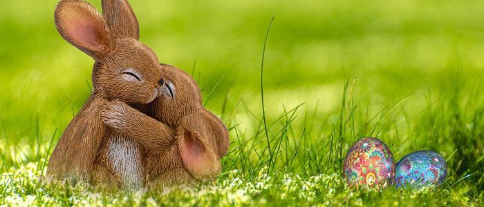 抱き合うウサギ